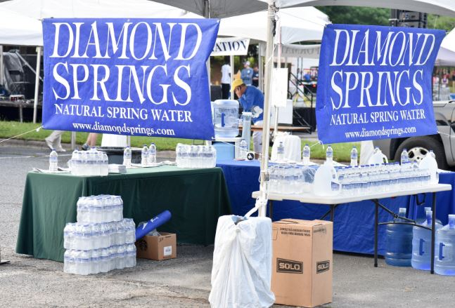 Diamond Springs2.JPG